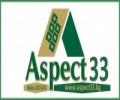 Аспект 33 лого