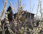 Къща, Пловдив област, с.Цалапица